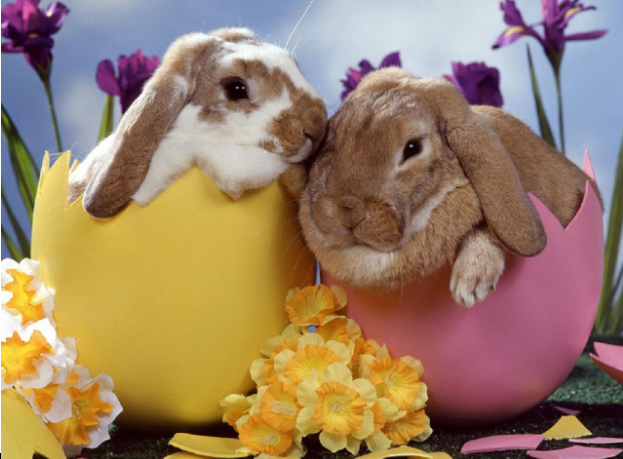 Bunnies%2C+Egg+Hunts%2C+and+Chocolate-+Easter
