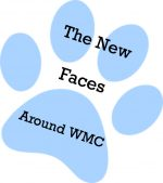The New Faces Around WMC