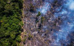 Destructive Fires Blaze through the Amazon