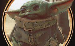 Behold Baby Yoda!