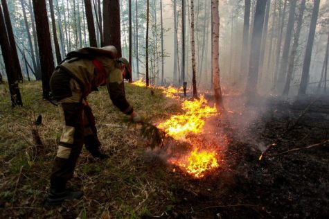 Fires in the siberian tundra