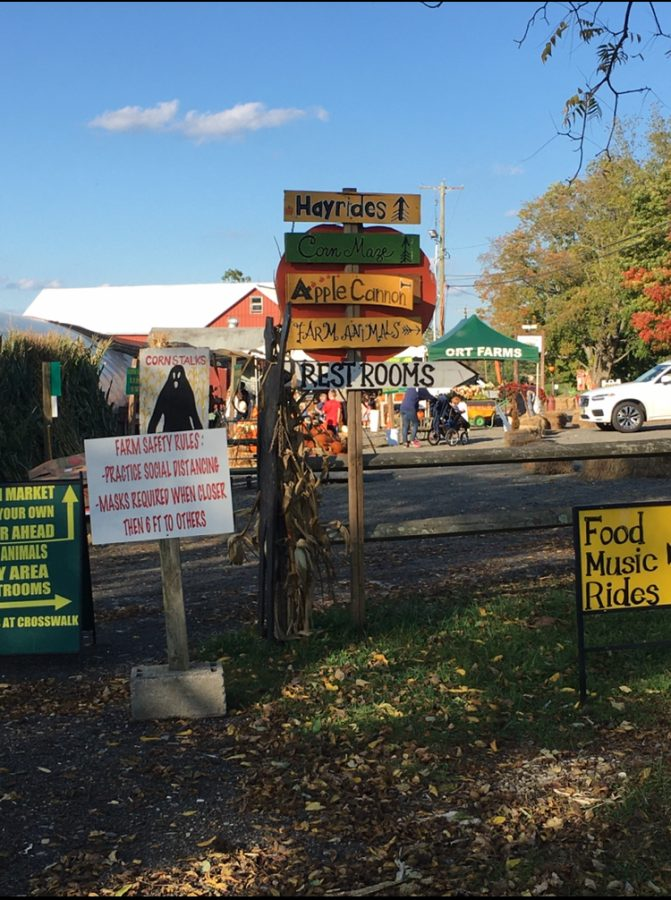 At Long Valley's Ort Farms, all Halloween festivities are still on. -Evelyn Oravez