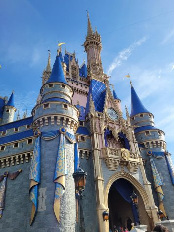 Disney in COVID: Characters, Rides, and Social Distancing!