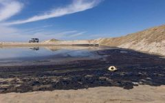 California Oil Spill: Whos to Blame?